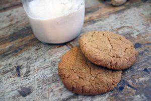 Gingernut Biscuits (Autoimmune Friendly)